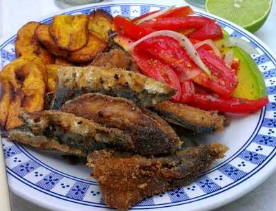 Gastronomía Típica Venezolana De Cada Región